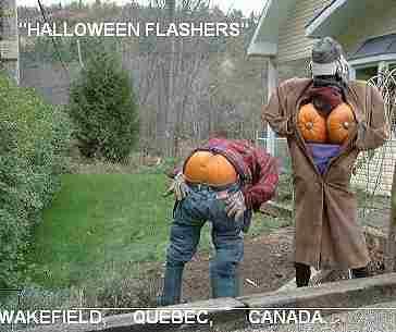http://www.tagyerit.com/images/pumpkins/flashers.jpg